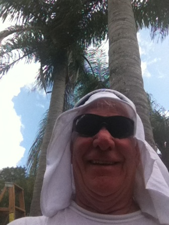 the following is a picture of a palm tree terrorist